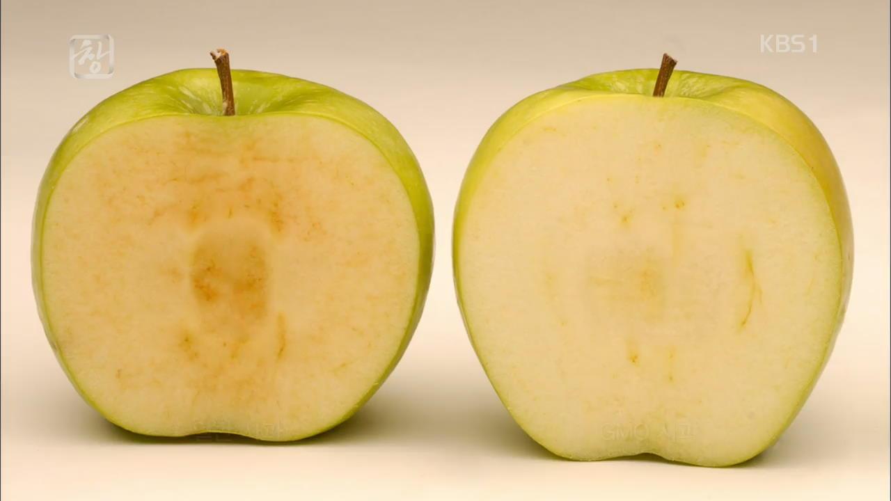 식탁 위 GMO, 알고 먹읍시다