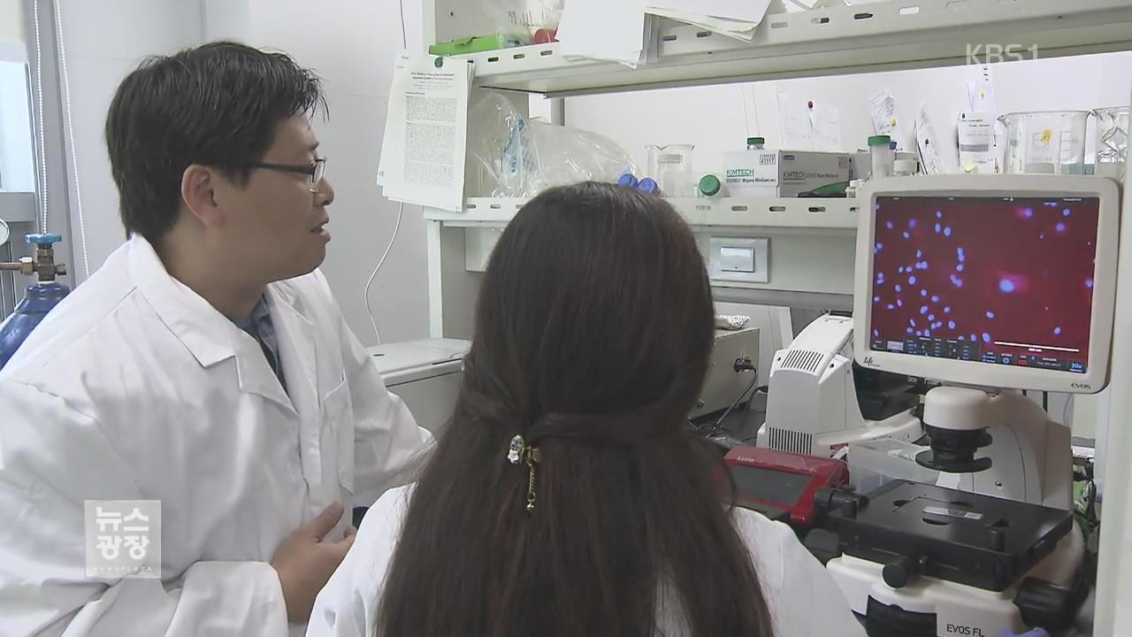 """""""암 세포 스스로 파괴""""…새 암 치료법 개발"""