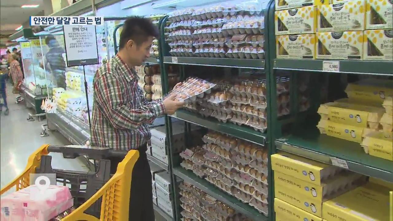 여전히 불안한 소비자…어떤 달걀이 안전한가?