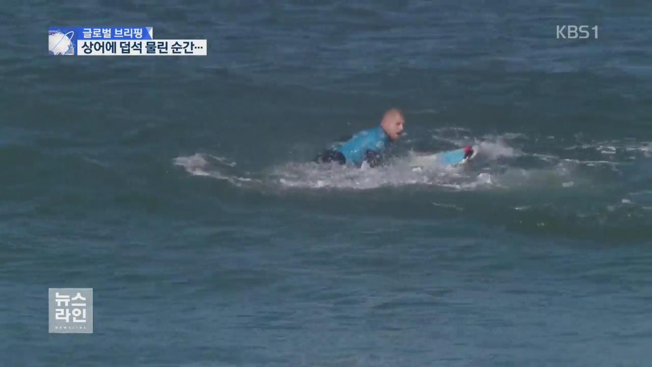 [글로벌 브리핑] '상어와 격투'…물렸다가 극적 탈출