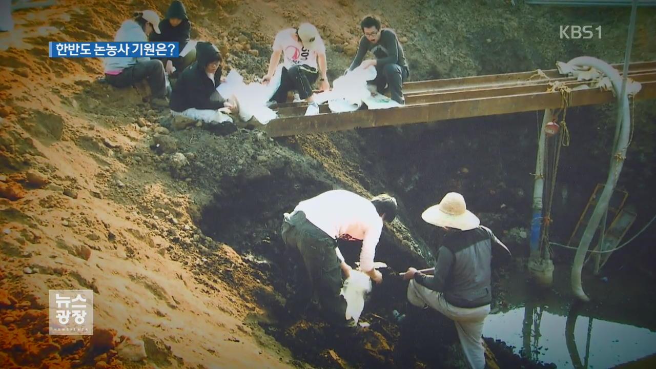 """김포서 '쌀 꽃가루 화석' 검출…""""3,500년 전 논농사"""""""