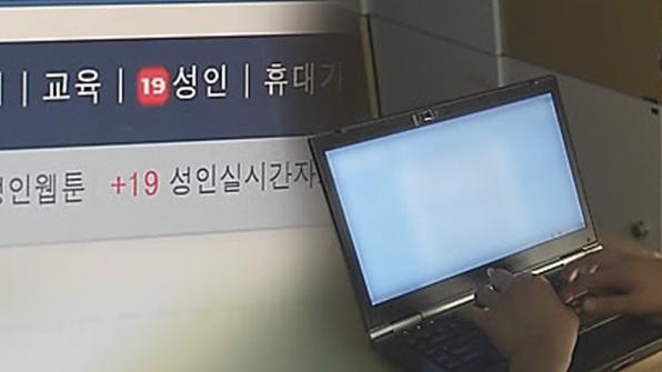 """""""음란물 주인공"""" 엉뚱한 여성 사진 인터넷 공개 20대 실형"""