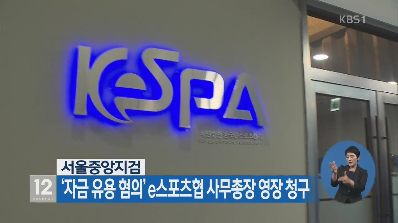 서울중앙지검, '자금 유용 혐의' e스포츠협 사무총장 영장 청구