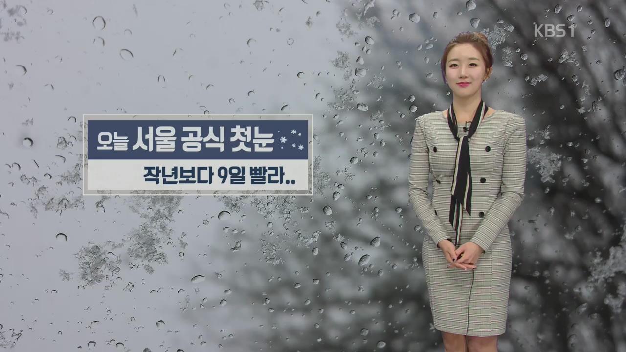 서울 '첫눈' 공식 관측…지난해보다 9일 빨라