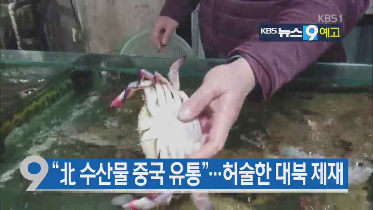 [12월 7일] 미리보는 KBS뉴스9