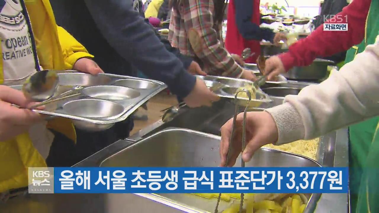 올해 서울 초등생 급식 표준단가 3,377원