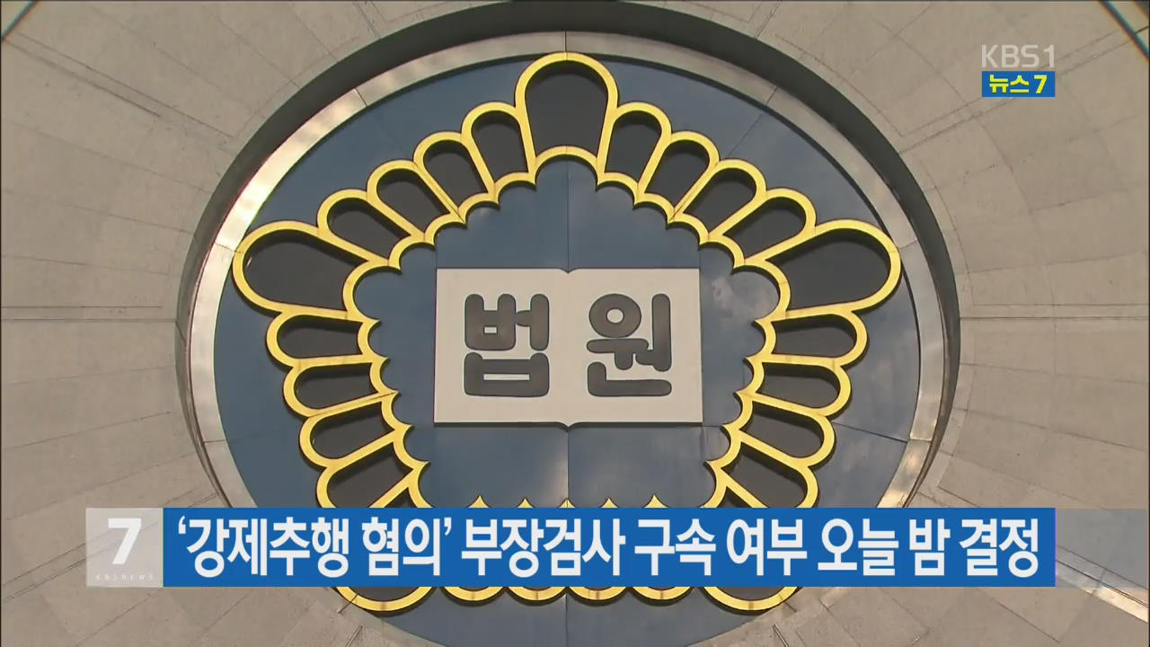'강제추행 혐의' 부장검사 구속 여부 오늘 밤 결정