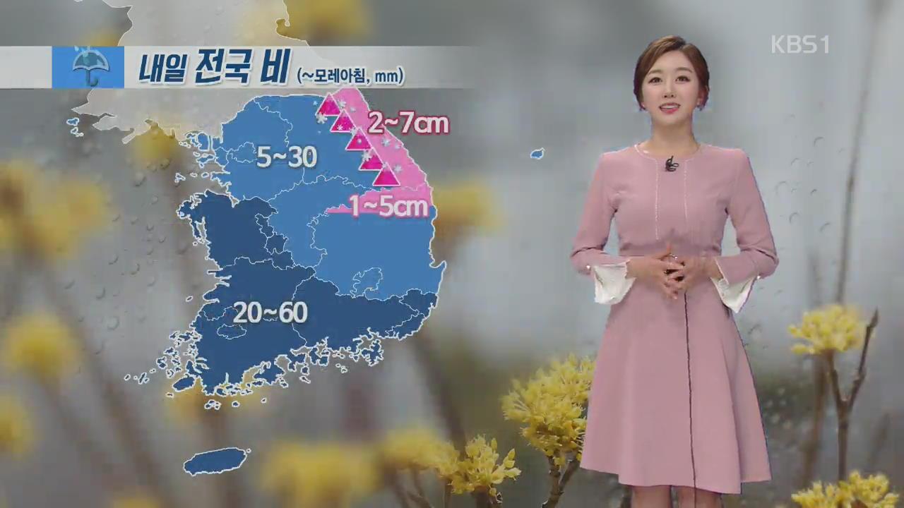 내일 전국 봄비…비 그친 뒤 기온 낮아져 '쌀쌀'