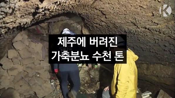[라인뉴스] 용암동굴로 가축분뇨 흘려보낸 양돈업자 적발