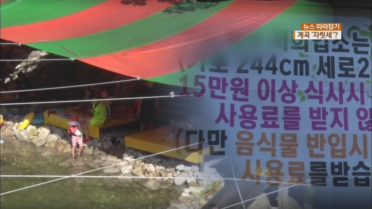 [뉴스 따라잡기] 돈 받는 계곡·하천 '명당'…생계 vs 불법