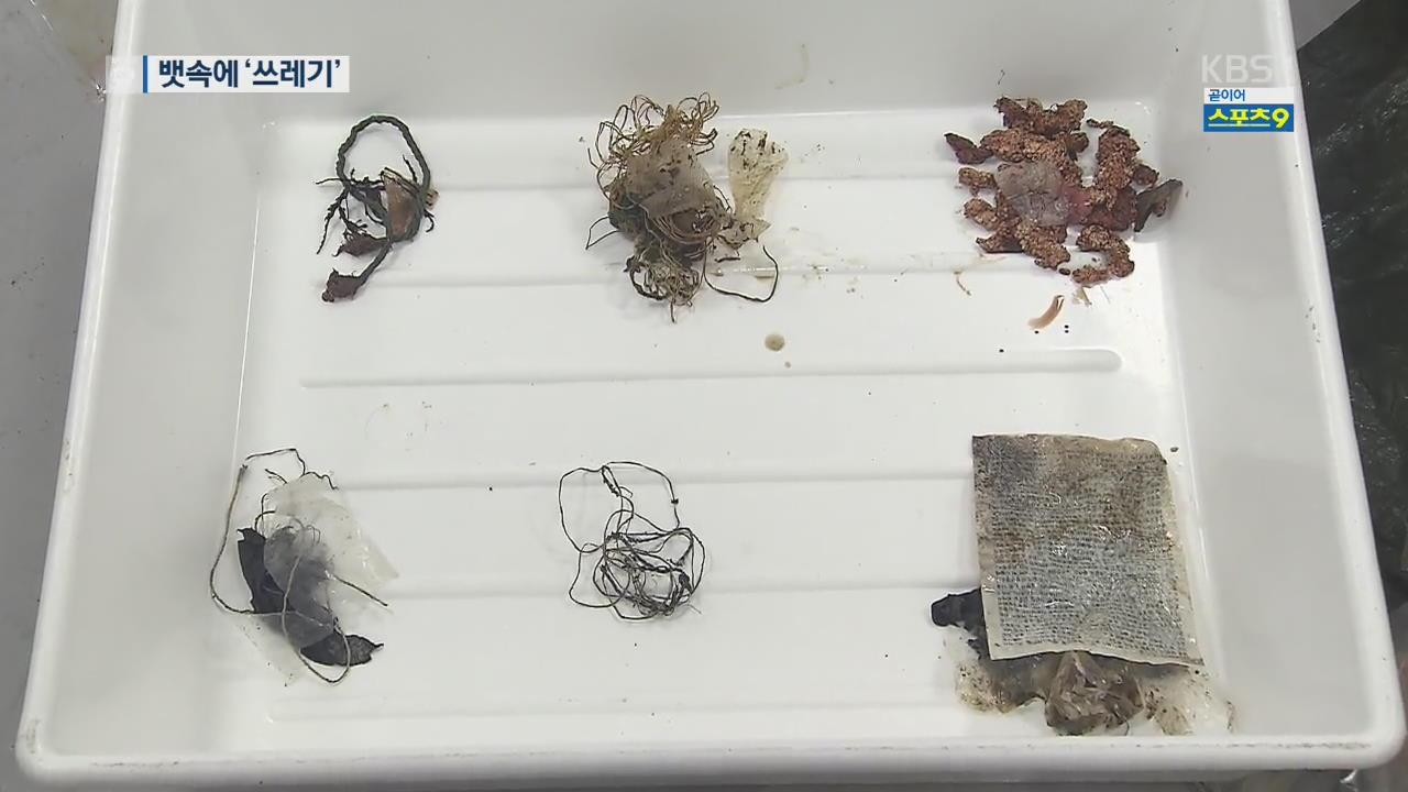 멸종위기 바다거북 '수난'…해양 쓰레기를 먹이로?