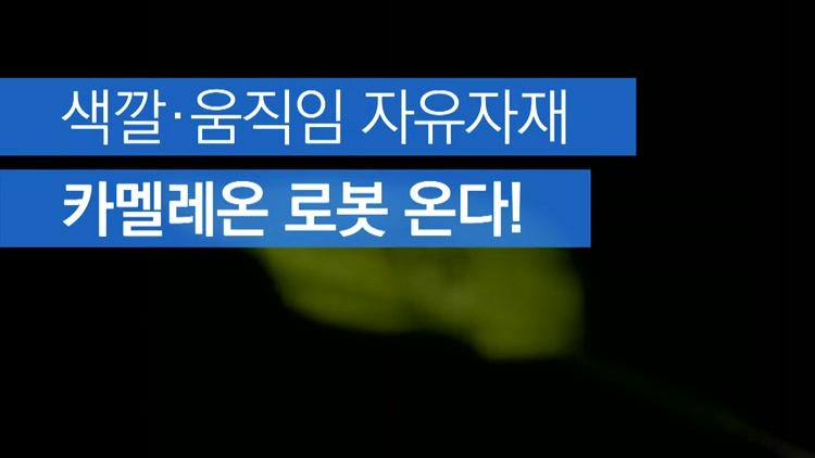 [자막뉴스] 색깔·움직임 자유자재…카멜레온 로봇 온다!