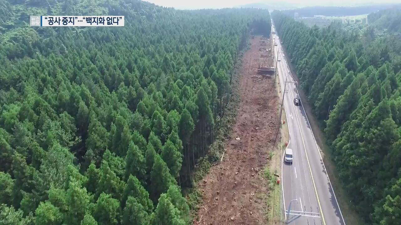 """삼나무 숲 훼손 논란…""""굳이 넓혀야 하나"""""""
