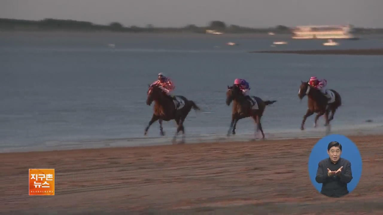 [지구촌 화제 영상] 스페인 해변 경마 대회