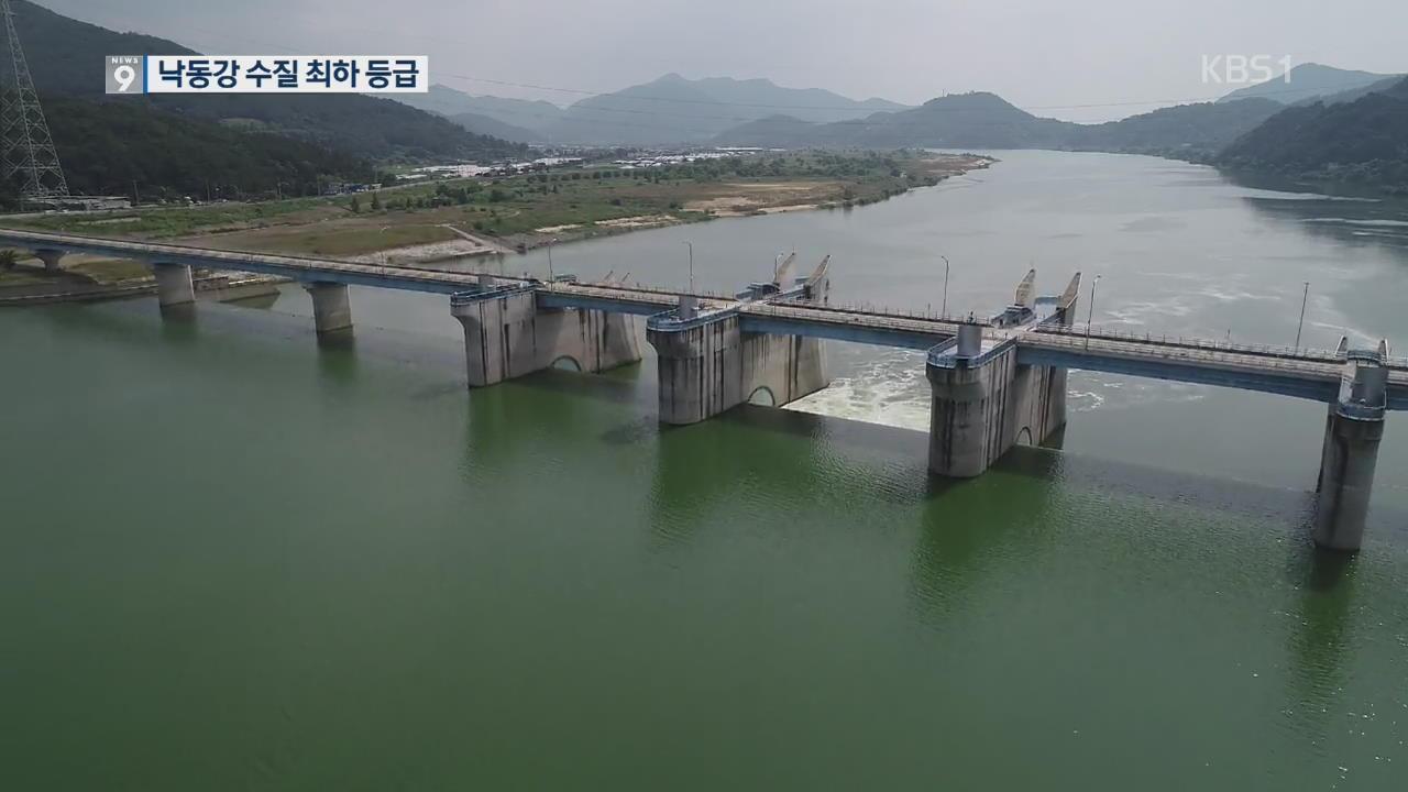 [단독] 낙동강 원수 수질 최악…최하 6등급 '죽은 물'