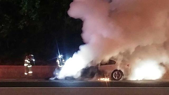 한국인 운전 스타일 때문에 불?
