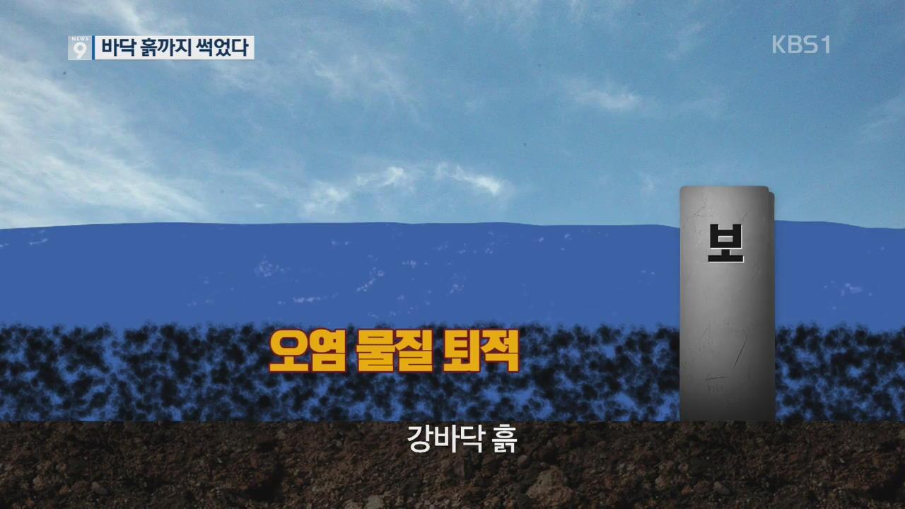 """낙동강 바닥 흙도 썩었다…""""흘려보내는 게 최선"""""""