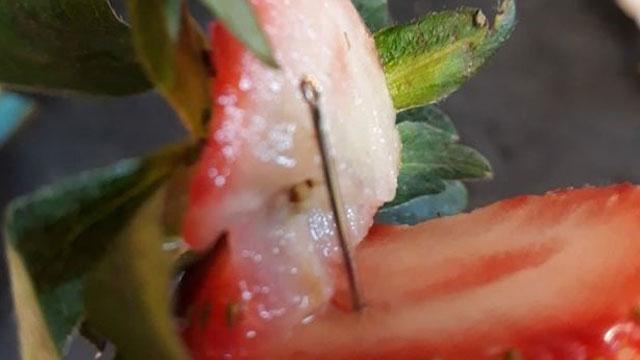 [글로벌 돋보기] 딸기 속 바늘테러…사과·바나나까지