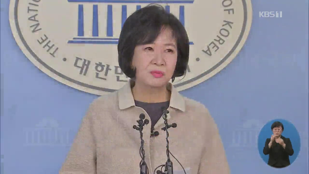 """'투기 의혹' 손혜원 민주당 탈당…""""당에 더 이상 부담 안돼"""""""