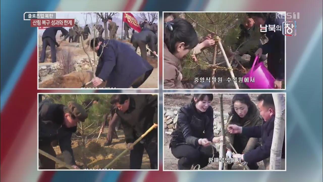 [클로즈업 북한] 북한 산림 복구 총력…성과는 미지수