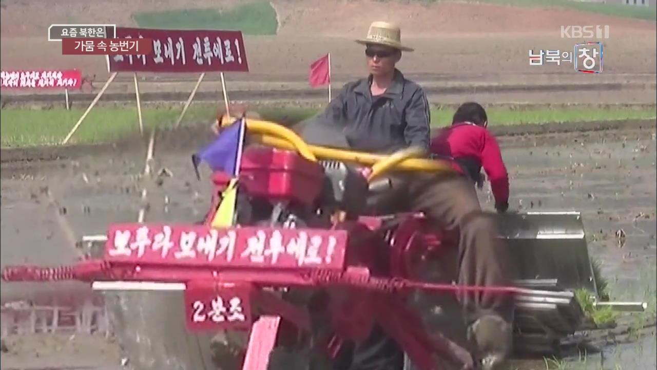 [요즘 북한은] 모내기 시작…최악 가뭄 우려 외