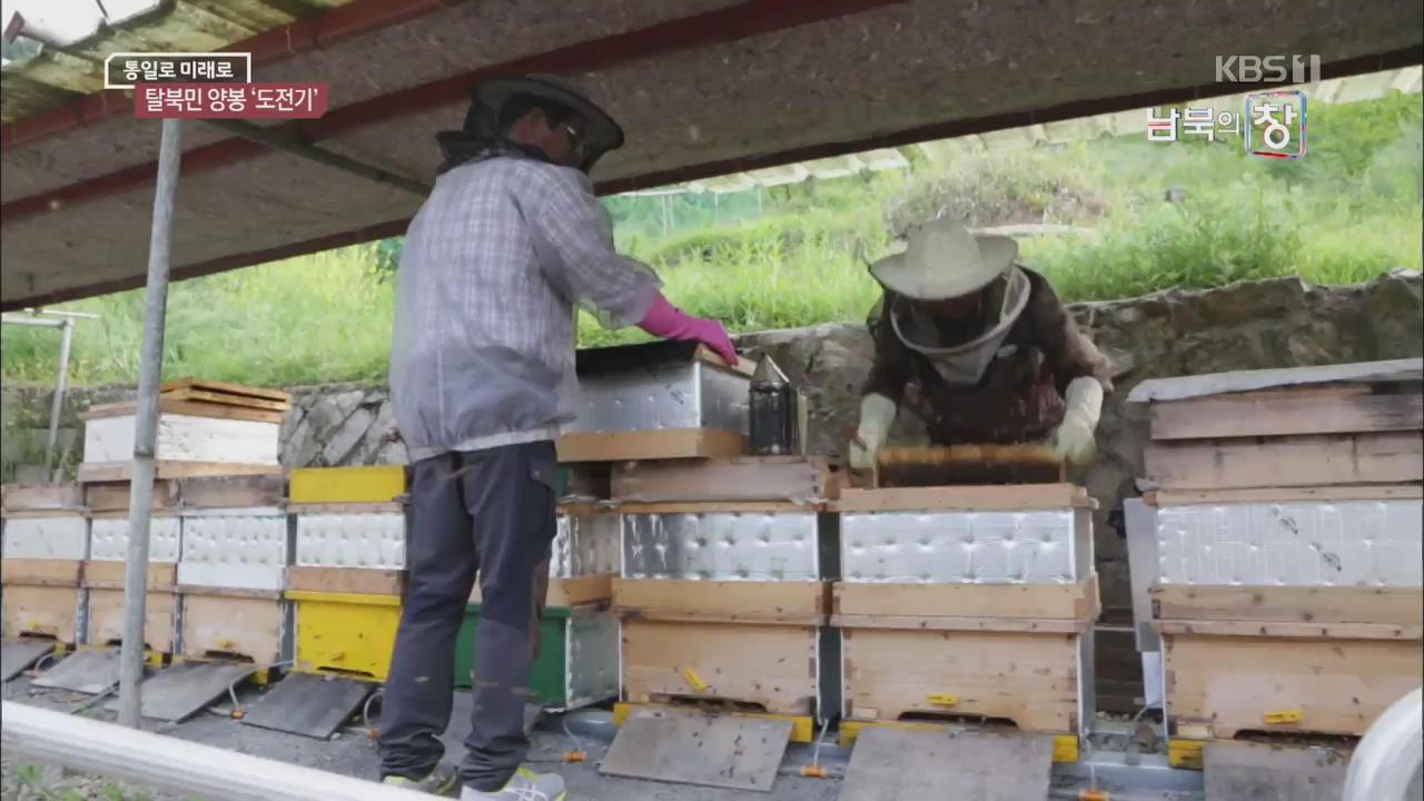 [통일로 미래로] 꿀벌과 함께…탈북민 '달콤한 인생'