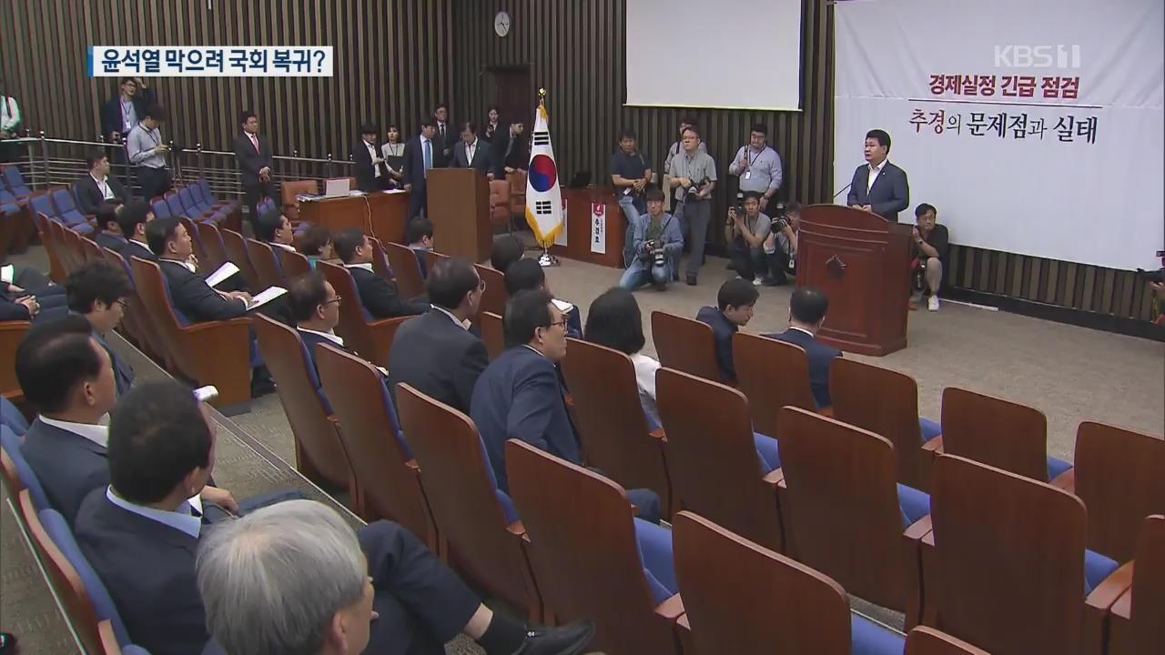 """""""윤석열, 청문회로 저지""""…한국당 복귀 명분 찾나?"""